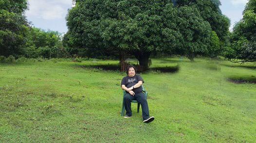 Mala-paraisong Mindoro
